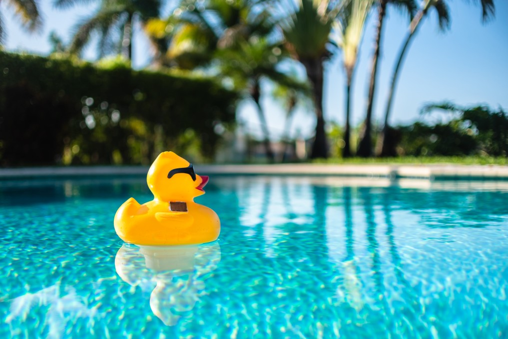 piscine nettoyé